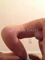 chicas escort bs as,secy vip,distintas tran | HushEscort