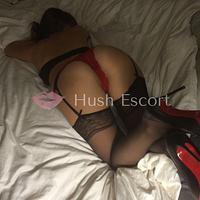 escort vip microcentro,altotarget comodoro,putas de pilar | HushEscort