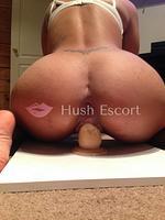 escortplanet,putas iquique,escort mulata,escort renca | HushEscort