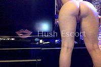 sexo gratis temuco,portal escort concepcion,putas la cisterna,mujeres culonas hot   HushEscort