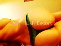 escort de lujo santiago,victoria escorts,estokada antofagasta,sexo gratis con chilenas | HushEscort