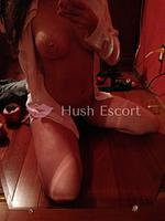 educada atractiva curvilínea hago servicio completo por pocos días., hot paraguay,magdy alvarito,paraguaya anal,casa rosada acceso sur